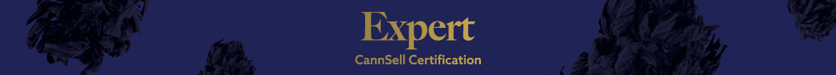site-images---expert-banner.png